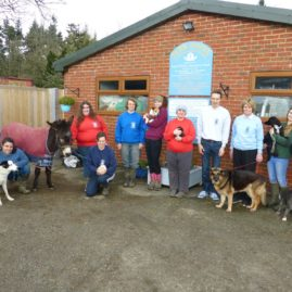 Animal Charity of the Year FInalist – Lord Whisky Sanctuary Fund